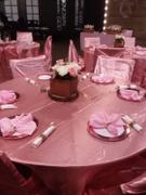 tableclothsfactory.com Rose Quartz Universal Satin Chair Cover Review