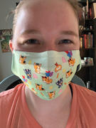 Park Candy Children's Corgi Land Reusable Face Mask Review