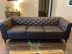 Poly & Bark Essex Sofa Review