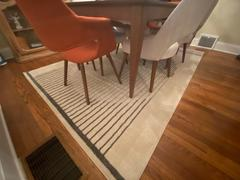 Poly & Bark Deco Area Rug Review