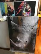 ELEartwall Rhino Zebra Black & White Print Review
