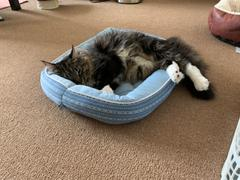 Aki-Home Pet Bed Rectangle N-Cool 3.0 Review