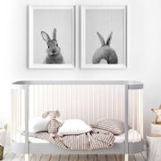 Enjoy Canvas 2 Panel Bunny Rabbit Canvas Wall Art Review