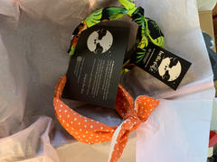 Bella Notte & Co Not Our Dino! Hairband Review
