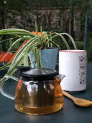 Happy Earth Tea Bell Glass Teapot with Infuser Review