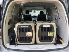 Gunner Kennels G1™ SMALL Review