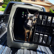 Gunner Kennels G1™ LARGE Review