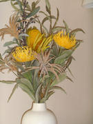 Afloral.com Pack of 2 - Dried Yellow Banksia with Leaves Review