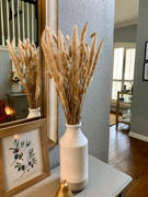 Afloral.com Pack of 6 - Smooth Natural Tan Pampas Grass - 25-29.5 Review