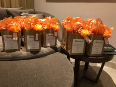 Afloral.com CASE OF 100 Orange Yellow Carnation Bulk Silk Flower Picks - 5 Tall Review