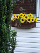 Afloral.com SALE - Artificial Sunflower Bush in Yellow 19 Review