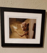 Harry Potter Shop Dobby Framed Print from Harry Potter and the Chamber of Secrets Review