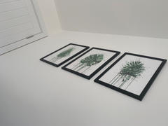 We Love Prints Tropical Leaf Wall Art Print Review