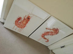 We Love Prints Seafood Wall Art Print 'Prawn' Review