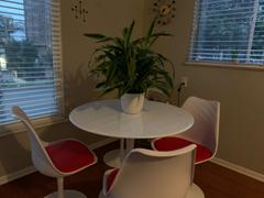 Modholic Tulip 36 Fiberglass Dining Table & Chairs Set Review