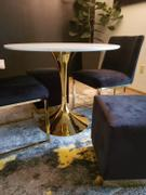 Modholic Tulip Dining Table 35.5 Gold Base Review