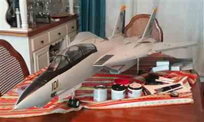 Brad H. verified customer review of Freewing F-14 Tomcat Twin 80mm EDF Jet - PNP