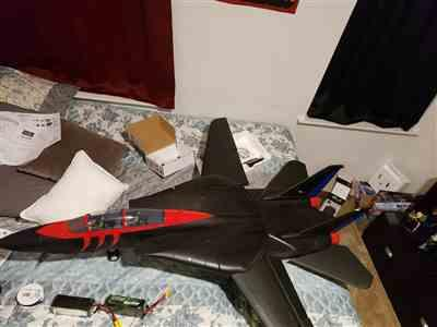 jose V. verified customer review of Freewing F-14 Tomcat Twin 80mm EDF Jet - PNP