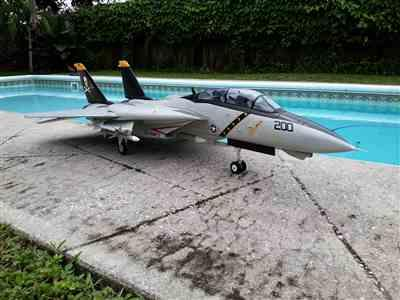 Brad Hatley  verified customer review of Freewing F-14 Tomcat Twin 80mm EDF Jet - PNP