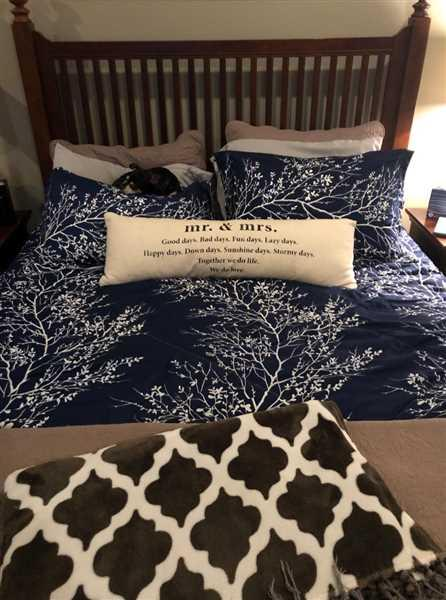 Kim Davis verified customer review of Navy Blue Foliage Reversible Comforter Set + Two Free Sham Pillows