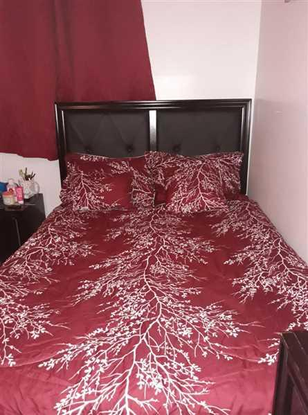 Fredonia verified customer review of Burgundy 6 Piece Foliage Reversible Comforter Set