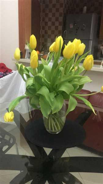 Maria B. verified customer review of Tulips Bouquet With Vase