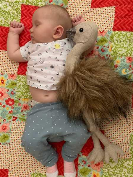 Elizabeth Whild verified customer review of Eddie The Emu = $15 Donation