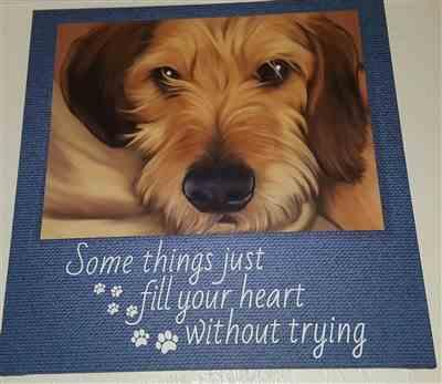 ANGELA ROSE verified customer review of Some Things Just Fill Your Heart Without Trying - Dog Photo Canvas