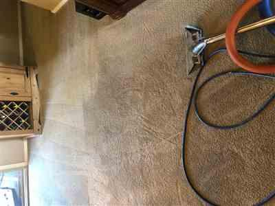 TMF Store: Carpet Cleaning Equipment Robs Secret Formula Container (Free and Clear) Review