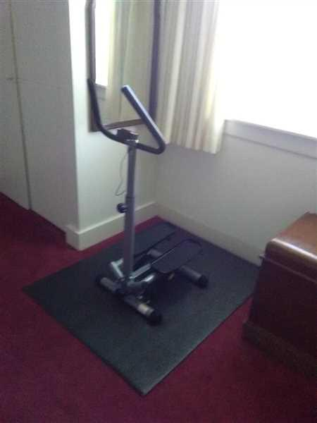 Sunny Health and Fitness Twist Stepper Step Machine w/ Handlebar and LCD Monitor Review