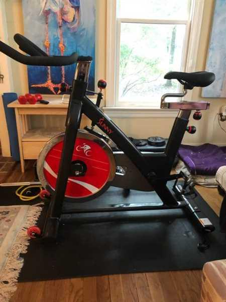 Sunny Health and Fitness Belt Drive Indoor Cycling Bike with Heavy 49 LB Flywheel Review