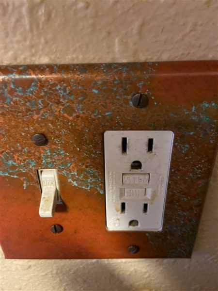 Melinda Sito verified customer review of Sierra Copper - 1 Toggle / 1 Rocker Wallplate