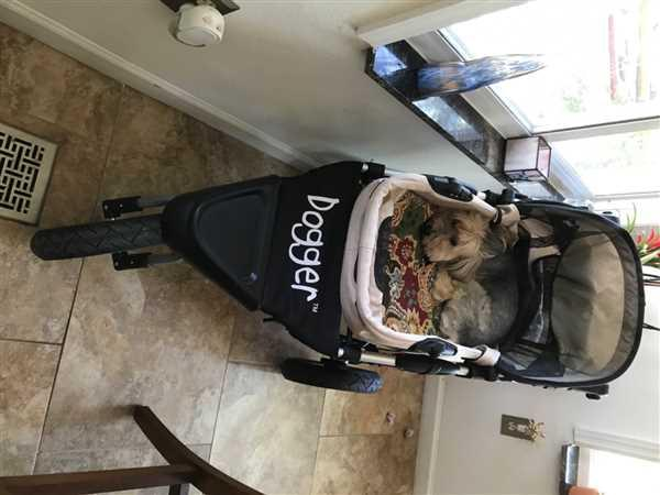 Dog Quality Dogger™ Stroller (PRE-ORDER June 20th) Review