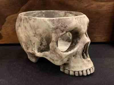 Amanda Jean Roberts - AJs Paper Studio verified customer review of Realistic Human Skull Candleholder