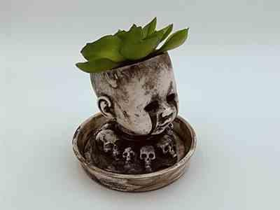 Jordan Paitsel verified customer review of Baby Doll Head Planter with Saucer