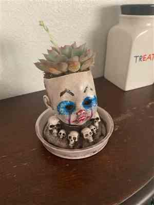 Alondra Granados verified customer review of Baby Doll Head Planter with Saucer