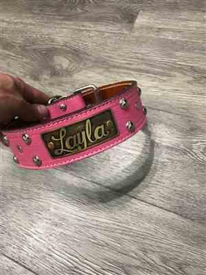 Paige Z. verified customer review of N12 - 2 Name Plate Studded Leather Dog Collar