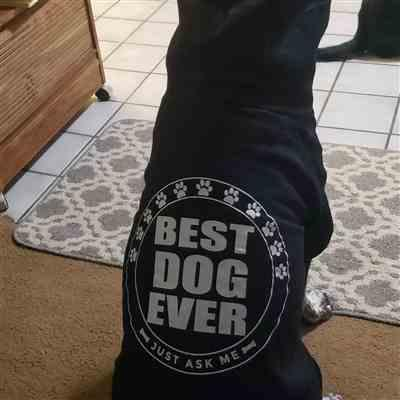 Susan Brown verified customer review of BEST DOG EVER - ZIPPER DOG HOODIE