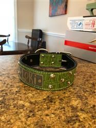 William S. verified customer review of WN1 - 2 Name Plate Cone Studded Leather Dog Collar
