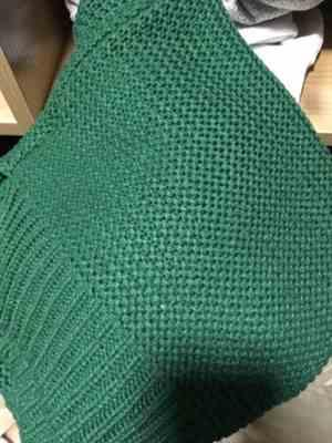 Pavacat Evergreen Knit Sweater Review