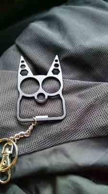 Pavacat Portable Multifunction Cat Keychain Review