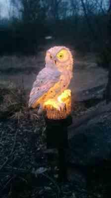 Pavacat Owl Solar Garden Lamp Review