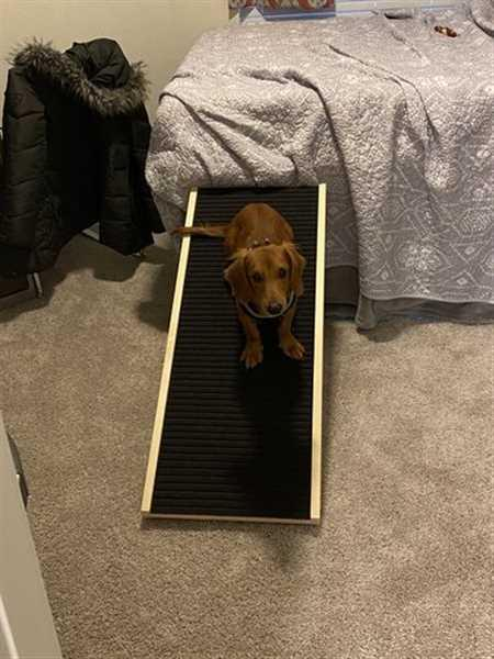 Abby E. verified customer review of DachRamp
