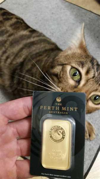 Bitgild 50g Gold Bullion | Perth Mint Gold Bar with Certificate Review
