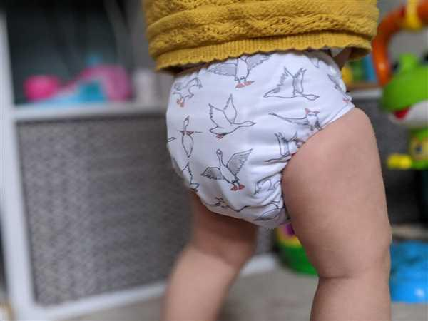 Louisa D verified customer review of Zebra Nappy Set
