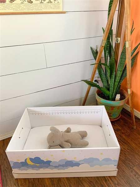 Finnbin Baby Box Baby Box Boxinet™: Baby Shower Special Review