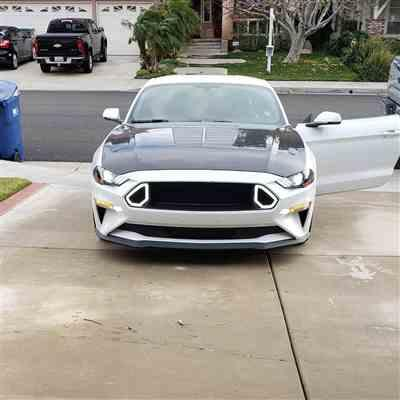 JimE Deyoung verified customer review of RTR Grille w/ LED Accent Vent Lights (18-19 GT & EcoBoost)