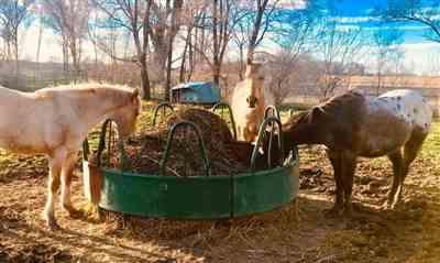 Rebecca Deacon-Raue verified customer review of Round Bale Hay Net