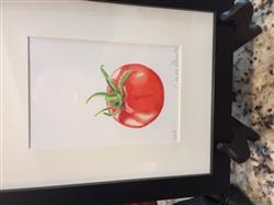 Claire d. verified customer review of Jumpstart Level 1: Ripe Tomato in Colored Pencil