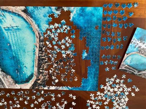 Through Our Lens Bronte Rockpool Puzzle Review
